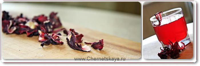 Каркаде — цветок восточной медицины