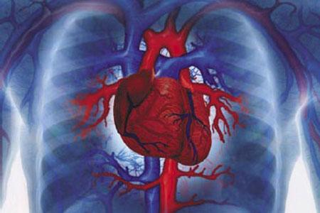 Правильность Гипотезы аритмии сердца подтверждается