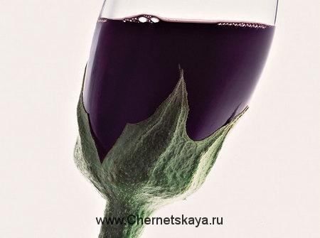 Алкоголизм- хромой ген судьбы